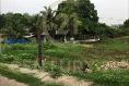 Foto de terreno habitacional en venta en  , plan de ayala, tihuatlán, veracruz de ignacio de la llave, 8897660 No. 04