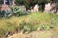 Foto de terreno habitacional en venta en  , las cuevitas, san miguel de allende, guanajuato, 3907927 No. 02
