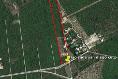 Foto de terreno habitacional en venta en  , san francisco de asís, conkal, yucatán, 14028729 No. 02