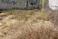Foto de terreno habitacional en venta en  , san rafael, la piedad, michoacán de ocampo, 14038494 No. 02
