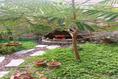 Foto de casa en venta en temescuitate , guanajuato centro, guanajuato, guanajuato, 20258447 No. 24