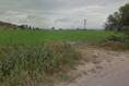 Foto de terreno habitacional en venta en  , urecho, colón, querétaro, 5388507 No. 05