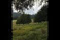 Foto de terreno habitacional en venta en  , valle de bravo, valle de bravo, méxico, 5931139 No. 07