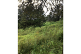 Foto de terreno habitacional en venta en  , valle de bravo, valle de bravo, méxico, 5931139 No. 08