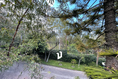 Foto de casa en venta en via encinos , bosques del pedregal, tlalpan, df / cdmx, 18797828 No. 07