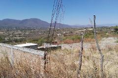 Foto de terreno habitacional en venta en . 0, miguel hidalgo, yautepec, morelos, 4206094 No. 01