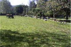 Foto de terreno comercial en venta en Nuevo Renacimiento de Axalco, Tlalpan, Distrito Federal, 4267005,  no 01