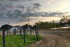 Foto de terreno habitacional en venta en Cedros, Centro, Tabasco, 4418520,  no 01
