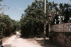 Foto de terreno comercial en venta en 307 1, alfredo v bonfil, benito juárez, quintana roo, 3030364 No. 01