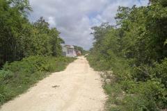Foto de terreno habitacional en venta en 1 1, colegios, benito juárez, quintana roo, 2553412 No. 01