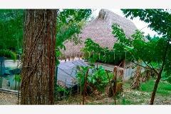 Foto de terreno habitacional en venta en carretera poza rica cazones 100, guadalupe, papantla, veracruz de ignacio de la llave, 1796478 No. 01