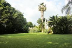 Foto de terreno comercial en venta en plan de ayala 123, plan de ayala barrancas, cuernavaca, morelos, 379720 No. 01