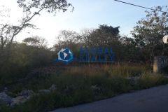 Foto de terreno habitacional en venta en Cholul, Mérida, Yucatán, 4626748,  no 01