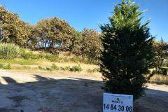 Foto de terreno habitacional en venta en El Palomar Secc Panorámica, Tlajomulco de Zúñiga, Jalisco, 4492302,  no 01