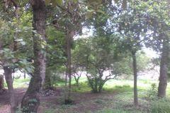 Foto de terreno habitacional en venta en Los Ocotes, Tepoztlán, Morelos, 5311177,  no 01