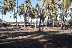 Foto de terreno comercial en venta en 3 Palos, Acapulco de Juárez, Guerrero, 4599842,  no 01