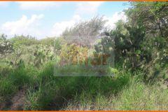 Foto de terreno habitacional en venta en Fundadores, Altamira, Tamaulipas, 4457109,  no 01