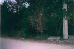 Foto de terreno habitacional en venta en calle 67 512, granjas, kanasín, yucatán, 1446879 No. 01