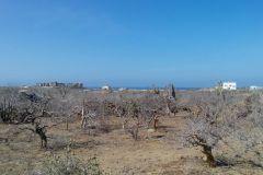 Foto de terreno habitacional en venta en Pescadero, La Paz, Baja California Sur, 4326905,  no 01