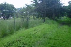 Foto de terreno habitacional en venta en kilometro 31 8909, san miguel topilejo, tlalpan, distrito federal, 403202 No. 01