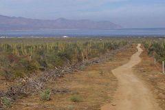 Foto de terreno habitacional en venta en Los Planes, La Paz, Baja California Sur, 4479063,  no 01
