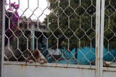 Foto de casa en venta en Hogares Mexicanos, Ecatepec de Morelos, México, 4520014,  no 01