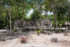 Foto de terreno habitacional en venta en aldea zama fase 2 , tulum centro, tulum, quintana roo, 4671434 No. 01
