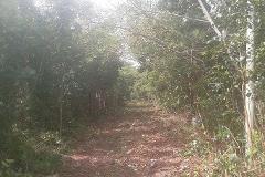 Foto de terreno comercial en venta en  , alfredo v bonfil, benito juárez, quintana roo, 2369938 No. 01