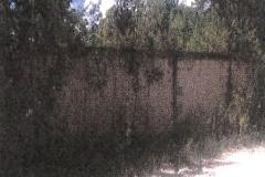 Foto de terreno comercial en venta en  , alfredo v bonfil, benito juárez, quintana roo, 3986135 No. 01