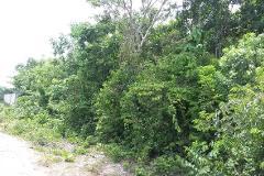 Foto de terreno comercial en venta en  , alfredo v bonfil, benito juárez, quintana roo, 4410615 No. 01