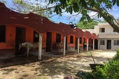 Foto de rancho en venta en  , alfredo v bonfil, benito juárez, quintana roo, 0 No. 01