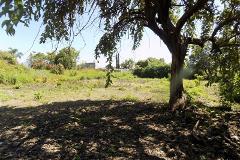 Foto de terreno habitacional en venta en  , altos de oaxtepec, yautepec, morelos, 3941477 No. 01
