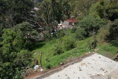 Foto de terreno habitacional en venta en alvaro obregon , la magdalena, la magdalena contreras, distrito federal, 4560486 No. 01
