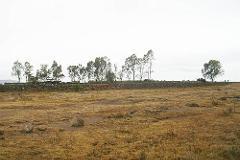 Foto de rancho en venta en  , amealco de bonfil centro, amealco de bonfil, querétaro, 2282302 No. 01