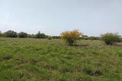 Foto de terreno habitacional en venta en  , apodaca centro, apodaca, nuevo león, 0 No. 01