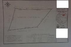 Foto de terreno habitacional en venta en arteaga a, arteaga centro, arteaga, coahuila de zaragoza, 4732938 No. 01