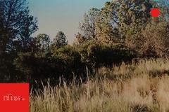 Foto de terreno habitacional en venta en  , arteaga centro, arteaga, coahuila de zaragoza, 4601276 No. 01