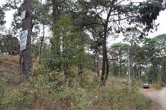 Foto de terreno comercial en venta en  , avándaro, valle de bravo, méxico, 3141303 No. 01