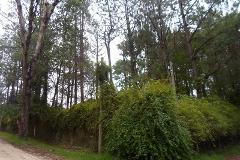 Foto de terreno habitacional en venta en avenida colibri , fátima, san cristóbal de las casas, chiapas, 1903070 No. 01