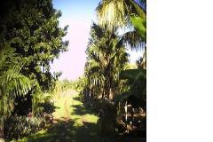 Foto de terreno comercial en venta en  , bacalar, bacalar, quintana roo, 4392725 No. 01