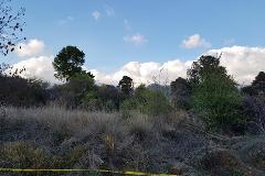 Foto de terreno habitacional en venta en baja california , los alcanfores, san cristóbal de las casas, chiapas, 4906007 No. 01