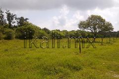 Foto de terreno habitacional en venta en s/n , banderas, tuxpan, veracruz de ignacio de la llave, 2698246 No. 01