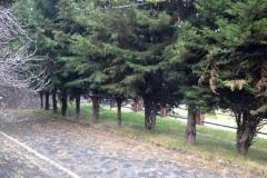 Foto de terreno comercial en venta en  , belvedere ajusco, tlalpan, distrito federal, 2612549 No. 01