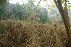 Foto de terreno habitacional en venta en  , bosques de cuernavaca, cuernavaca, morelos, 3378158 No. 01