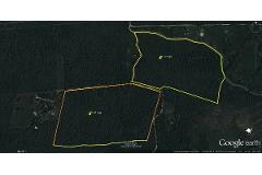 Foto de terreno habitacional en venta en  , bosques de kanasín, kanasín, yucatán, 2725869 No. 01