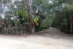 Foto de terreno habitacional en venta en bosques del caribe 0, supermanzana 117, benito juárez, quintana roo, 4398803 No. 01