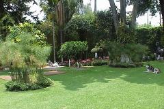 Foto de casa en renta en  , buenavista, cuernavaca, morelos, 2619285 No. 02