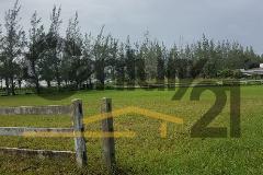 Foto de terreno habitacional en venta en  , buenavista, tampico alto, veracruz de ignacio de la llave, 4034737 No. 01