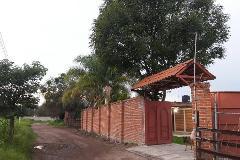 Foto de terreno habitacional en venta en  , buenavista, tlajomulco de zúñiga, jalisco, 3156972 No. 01
