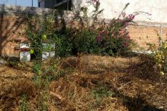Foto de terreno habitacional en venta en Carretas, Querétaro, Querétaro, 4858746,  no 01